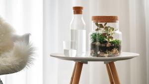 ecosysteem, storyplanter, kurk, glas, miniwereld