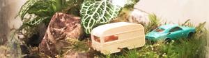 ecosysteem, caravan, auto, mos, plantjes, miniwerelod storyplanter