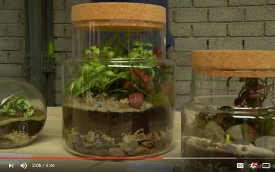 Storyplanter uitleg ecosysteem op minimakersfair eindhoven