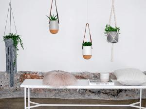 plantenhangers op een rijtje van blommingville storyplanter blog
