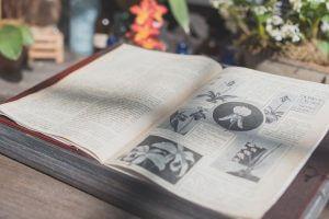 botanisch book storyplanter blog pixabay