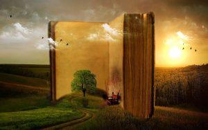 waanzinnig boek droombeeld storyplanter blog