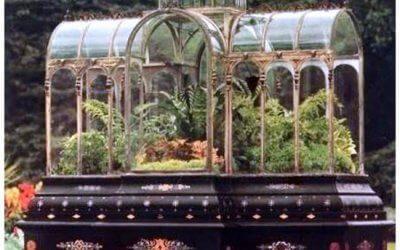 groene woonaccessoire eeuwenoud en weer hip ; een mini-ecosysteem