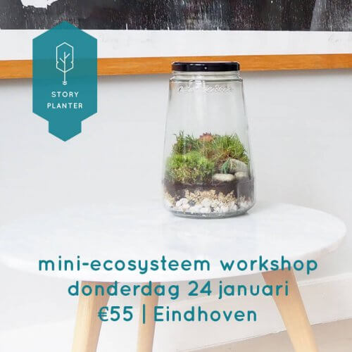 workshop mini-ecosysteem maken 24 januari 2019