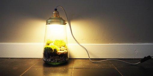 ecosysteemlamp